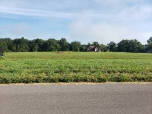 6 Prime Subdivision Lots - South Fork Estates at Absolute Online Auction