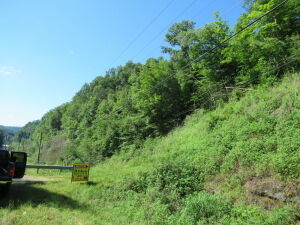 29.83 Acres in Breathitt County - Absolute Online Only Auction