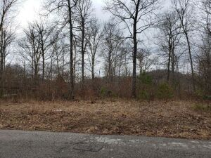 PRIME BUILDING LOT - WOODS BEND SUBDIVISION AT WOOD CREEK LAKE