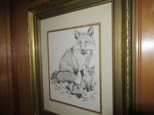 FOX SKETCH IN FRAME - US