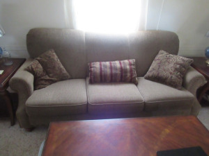 3 CUSHIONED COUCH