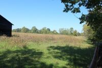 74 ACRES M/L - MOBERLY SECTION OF MADISON COUNTY - 20