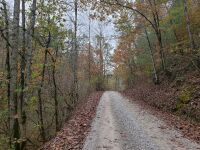 Approximately 98 Acres (Selling by boundary deed description) - 3
