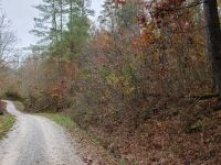 Approximately 98 Acres (Selling by boundary deed description) - 11