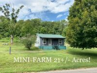 24 Acre Mini-Farm, House & Outbuildings/Barns at Absolute Online Auction - 3