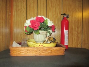 HOME DECOR & FIRE EXTINGUISHER -DR